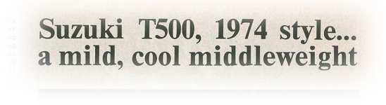 mcs1.jpg (9313 bytes)